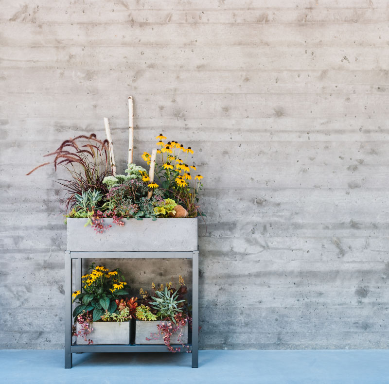 container design from the garden shed