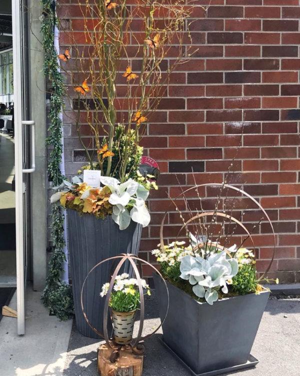 Outdoor Container Gardens