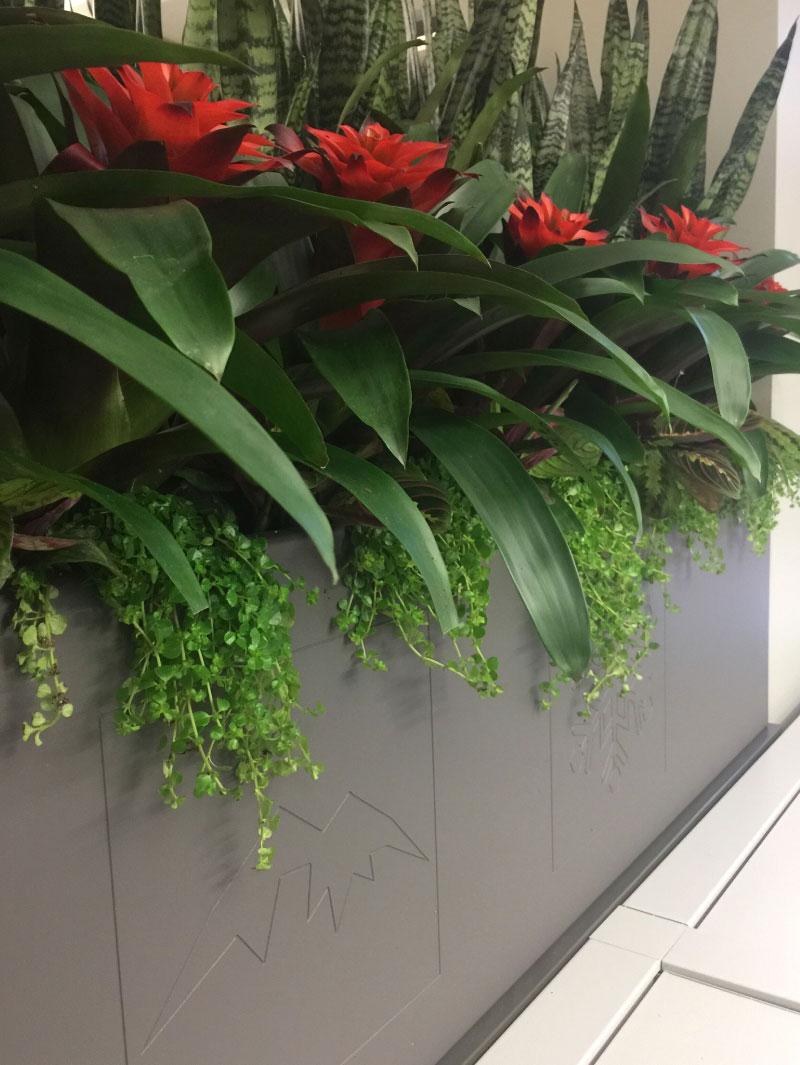 Real estate office container garden design