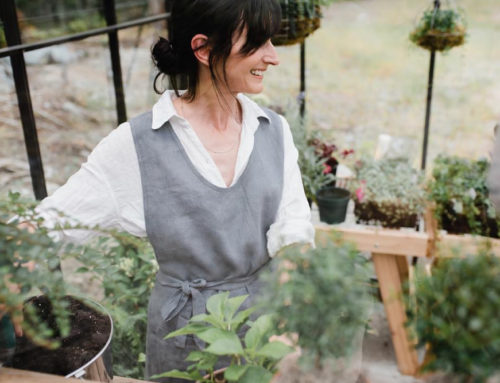 Catherine's Top Ten Tips for Fall Gardening