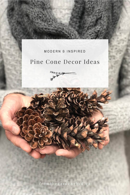 Modern Pine Cone Decor Ideas