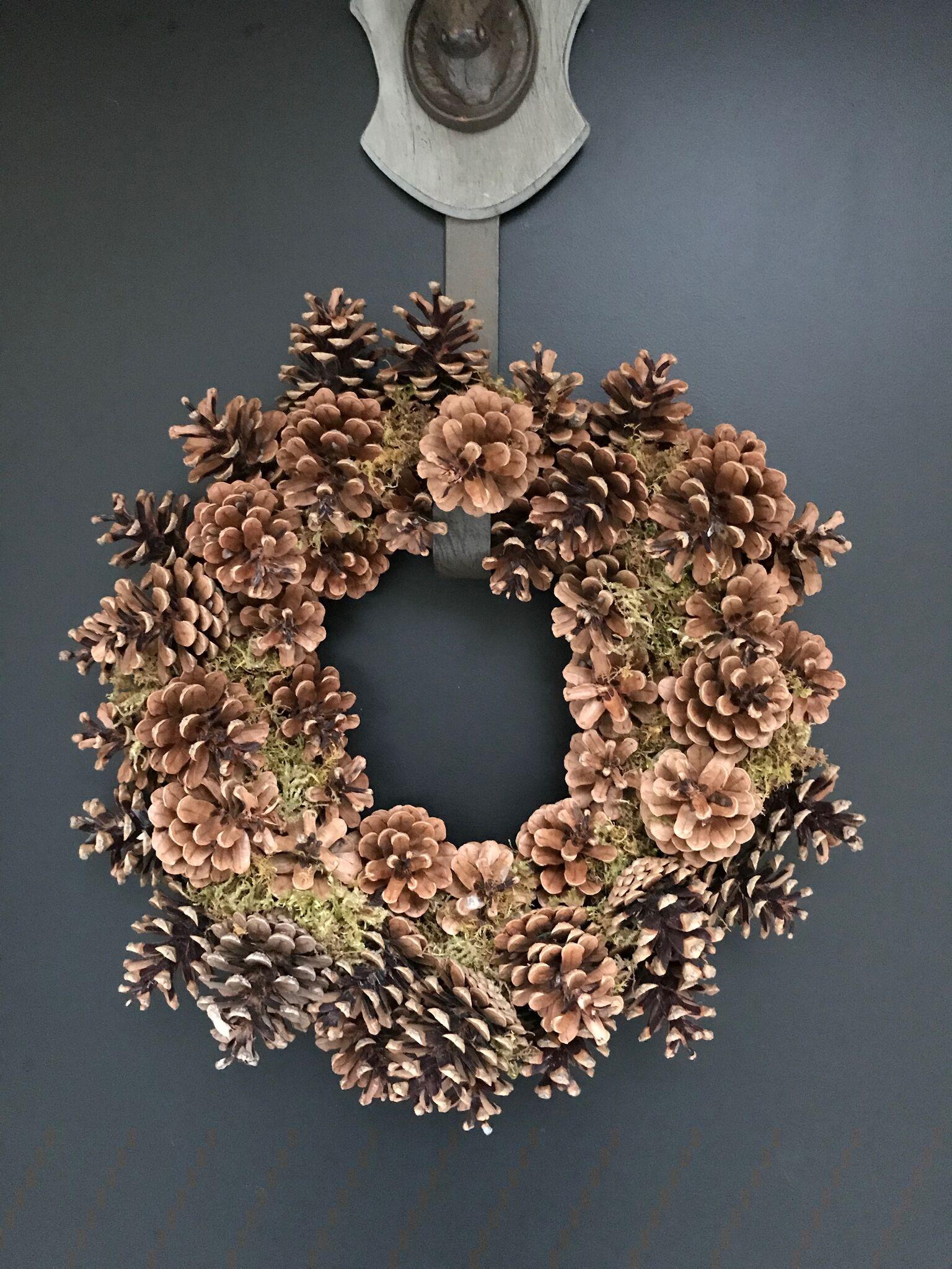 Wire Pine Cone Wreath hanging on door