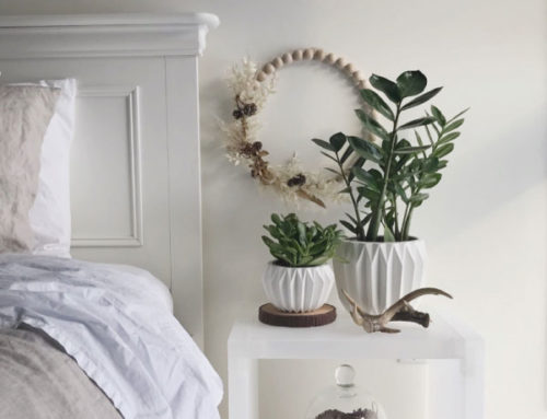 My Top 5 Favourite Houseplants (and a free download for you!)
